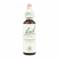 CLEMATIS FLOR BACH 20ML