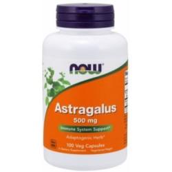 ASTRAGALUS 500GR 100CAPS (NOW)